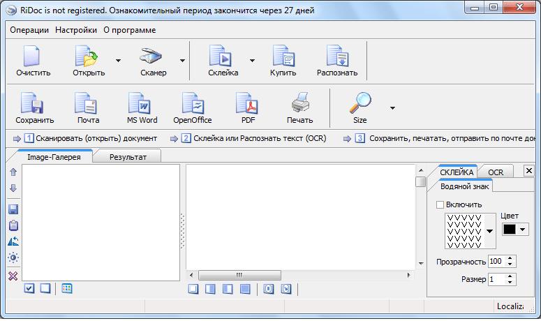 Стартовое окно программы RiDoc