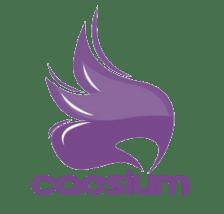 Программа Caesium
