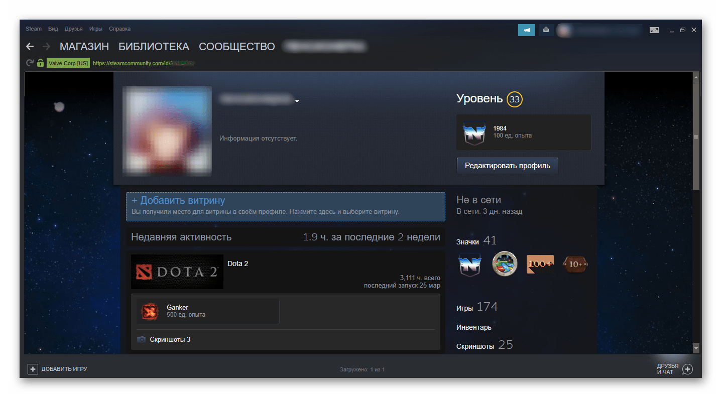Примененный фон в Steam