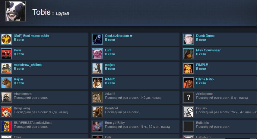 Список друзей профиля в Steam