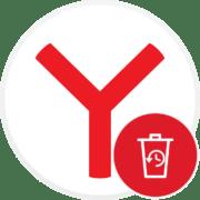 Как очистить историю в Яндекс.Браузере