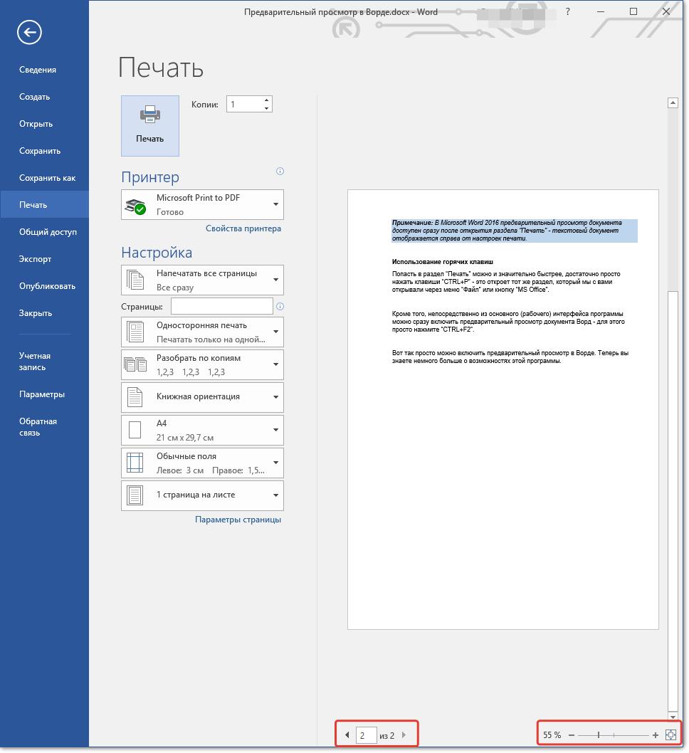 Предварительный просмотр выбор страниц и масштаба в Word