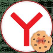 Как почистить куки в Яндекс.Браузере