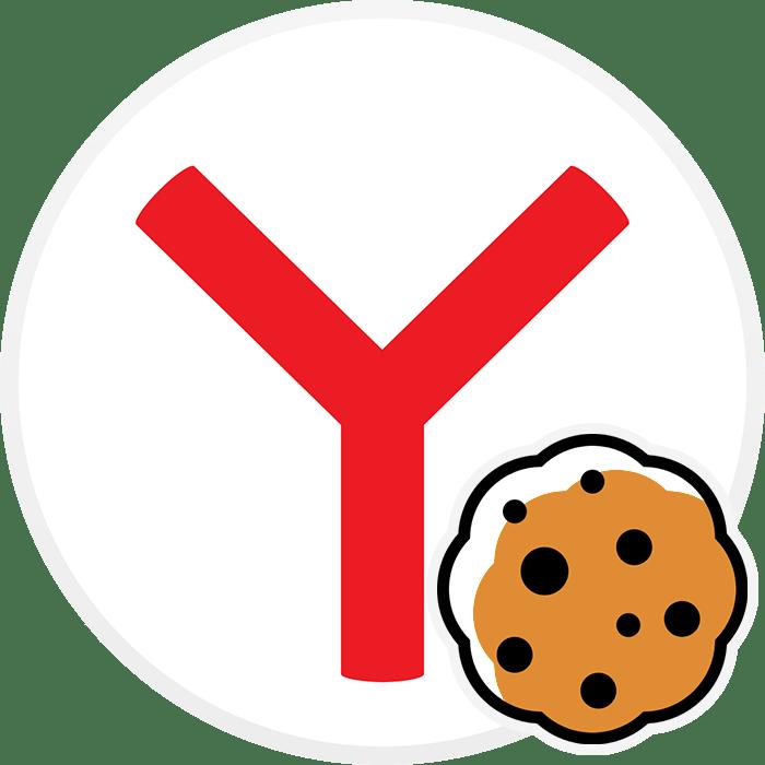 Как включить куки в Яндекс.Браузере