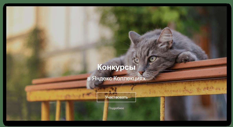 Конкурсы фото в Яндекс.Коллекциях