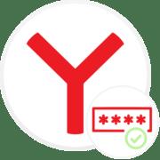Как сохранить пароль в Яндекс.Браузере