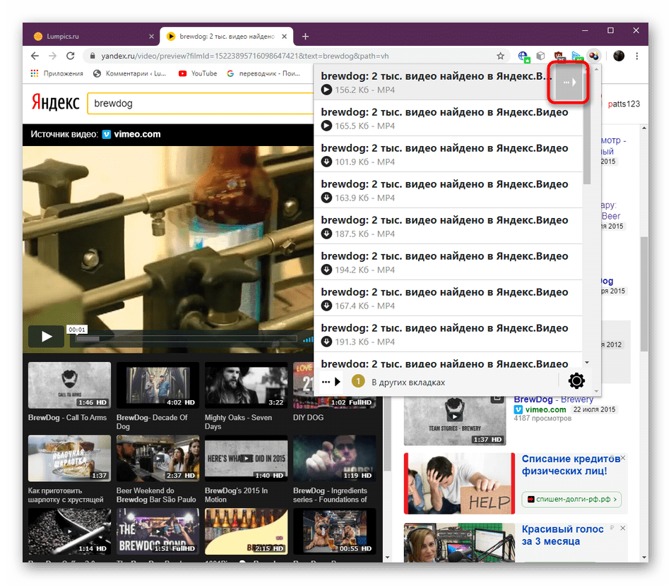 Открытие дополнительных опций для управления видео через браузерное дополнение DownloadHelper