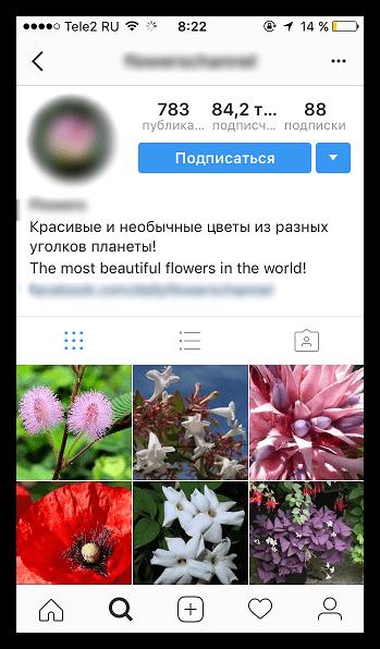 Подписка на открытую страницу в Instagram