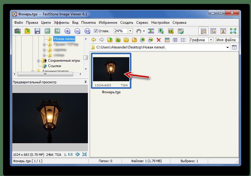 Файл TGA в режиме Предварительного просмотра FastStone Image Viewer