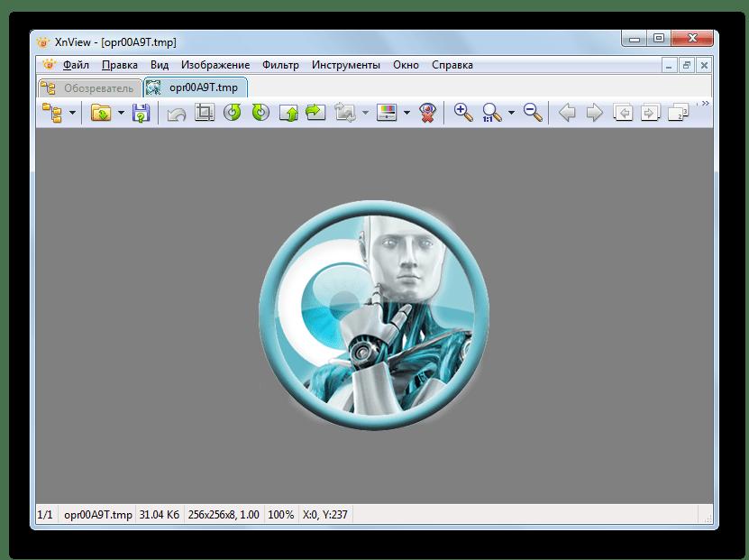Временный файл TMP открыт в XnView