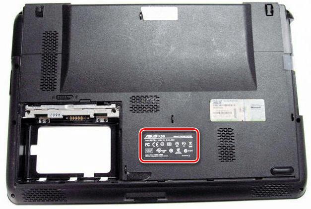 Наклейка с названием модели на корпусе ноутбука ASUS