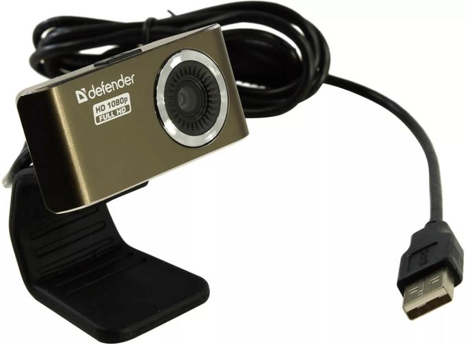 Пример веб-камеры без микрофона