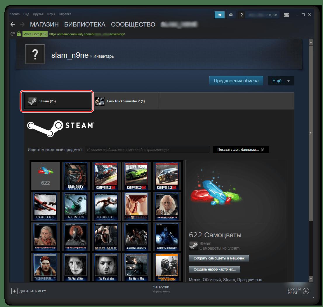 Инвентарь игрока в клиенте Steam