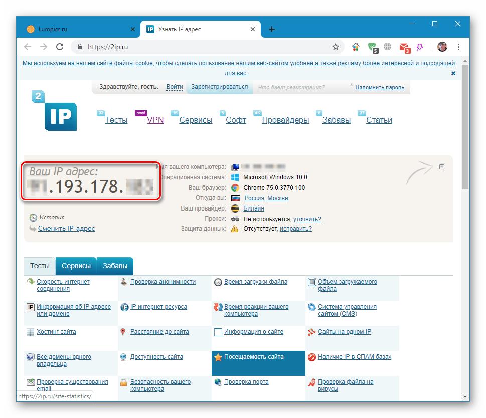 Проверка значения IP-адреса с помощью онлайн сервиса