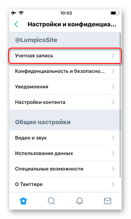 Параметры учетной записи в приложении Twitter для iPhone