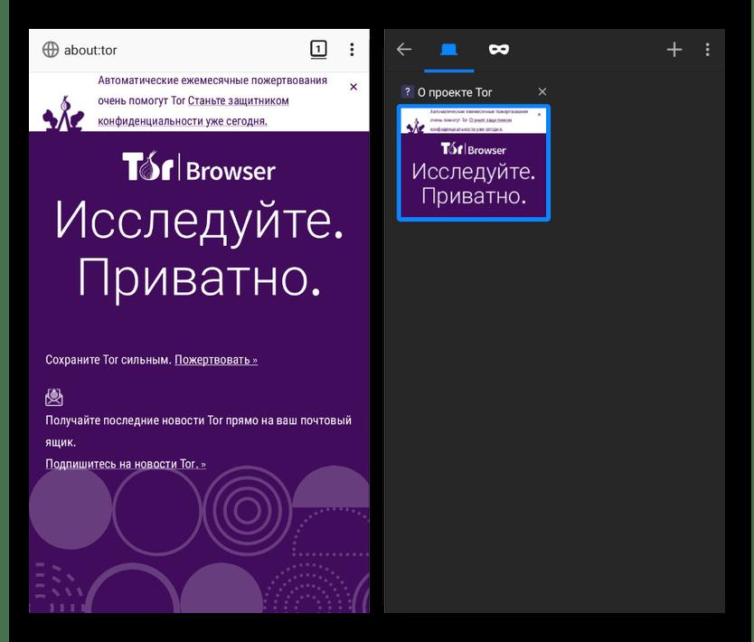 Успешное подключение к сети ТОР в Tor Browser на Android