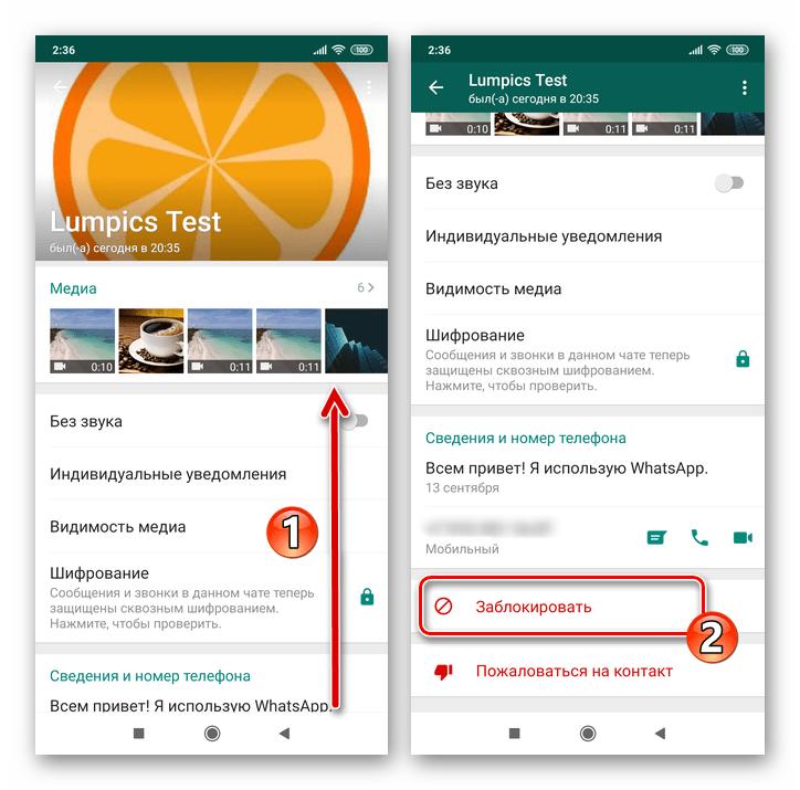 Whats App для Android Функция Заблокировать в списке опций Данные контакта