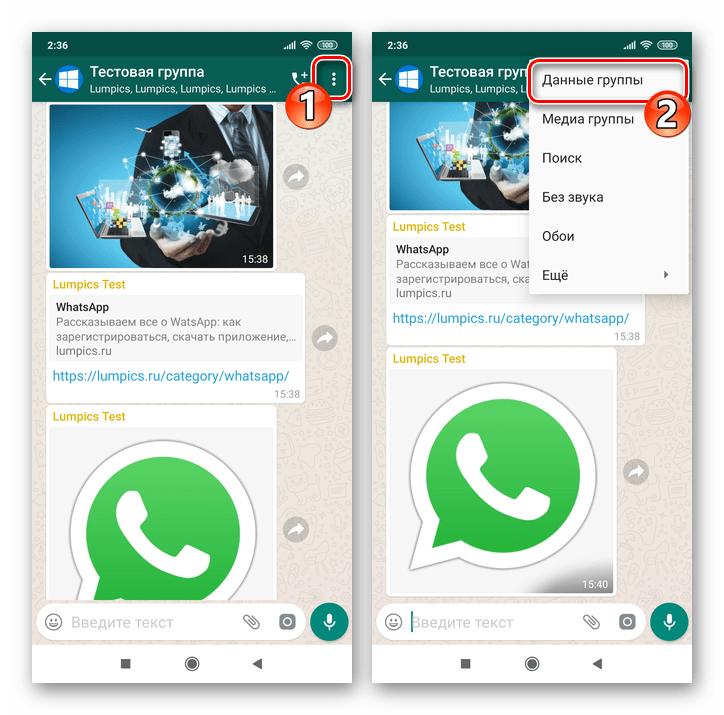 WhatsApp для Android меню группового чата - пункт Данные группы
