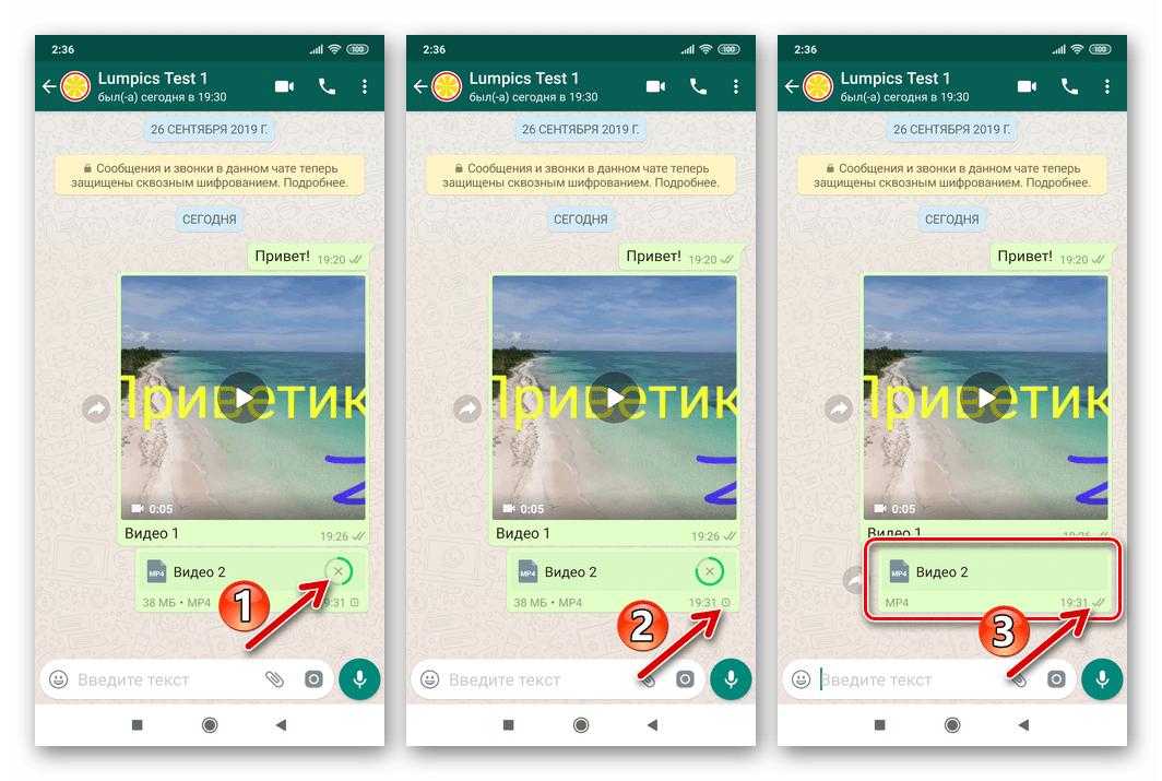 WhatsApp для Android процесс отправки файла через мессенджер и его завершение
