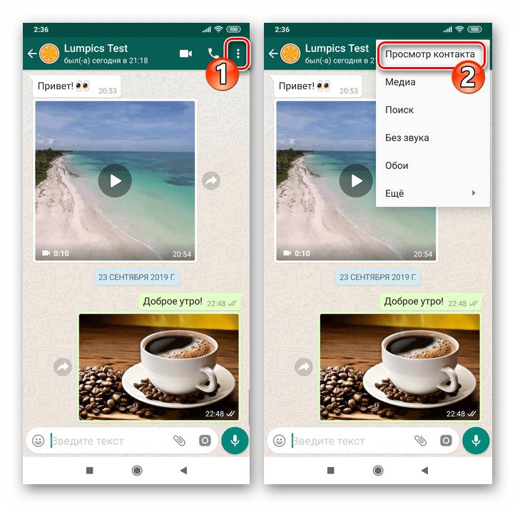 WhatsApp для Android вызов экрана Данные контакта из меню чата
