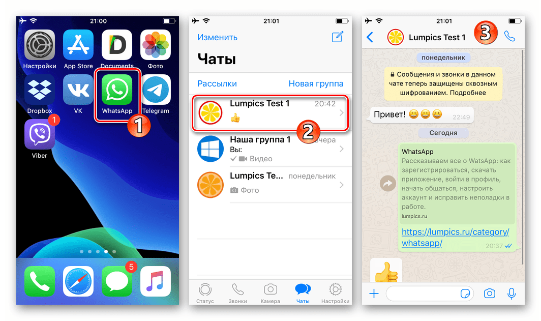 WhatsApp для iOS, запуск мессенджера, переход в чат с получателем видео