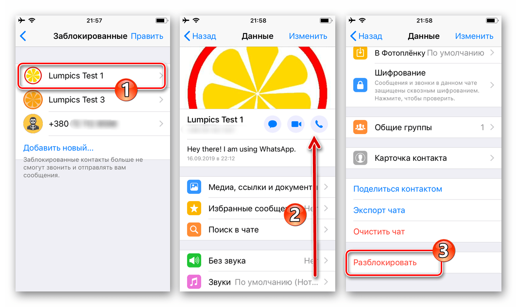 WhatsApp для iPhone удаление записей из черного списка - переход в Данные контакта