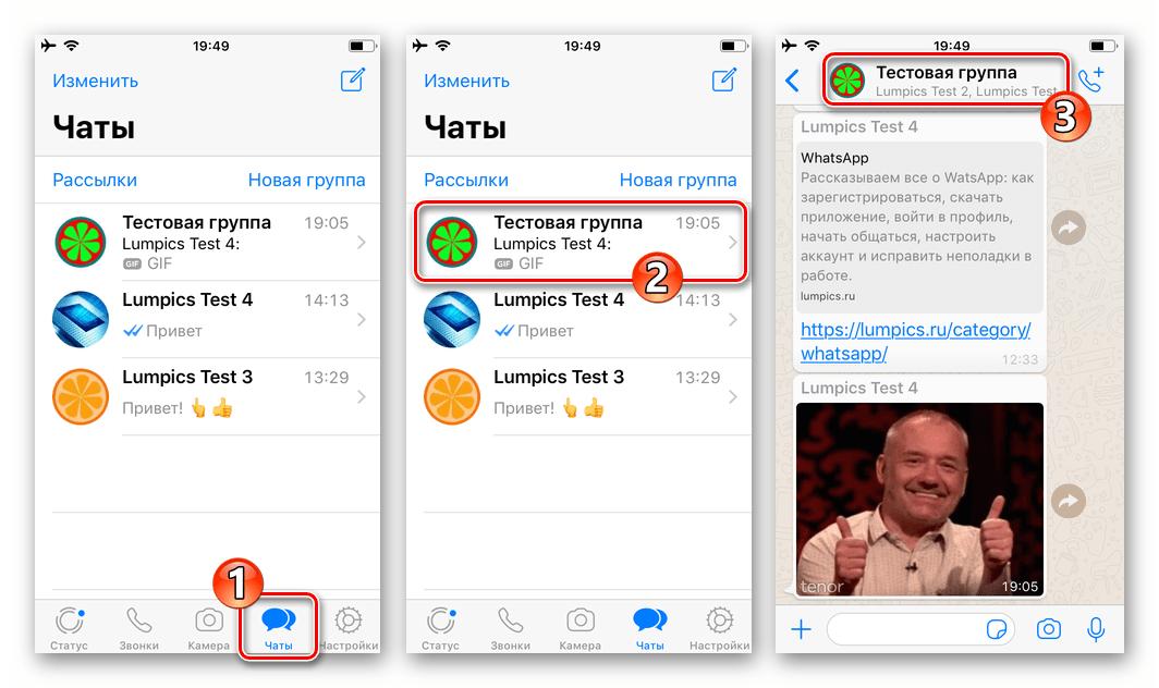 WhatsApp для iPhone вызов меню открытого диалога или группового чата