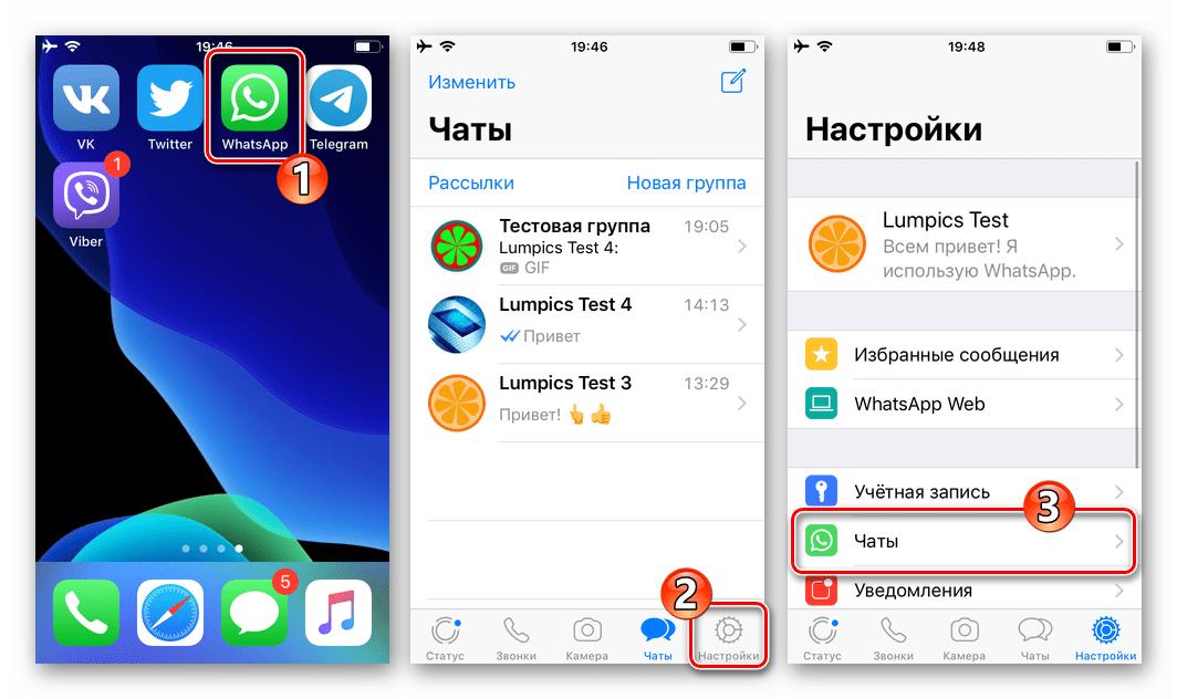 WhatsApp для iPhone запуск мессенджера, переход в раздел Чаты настроек приложения