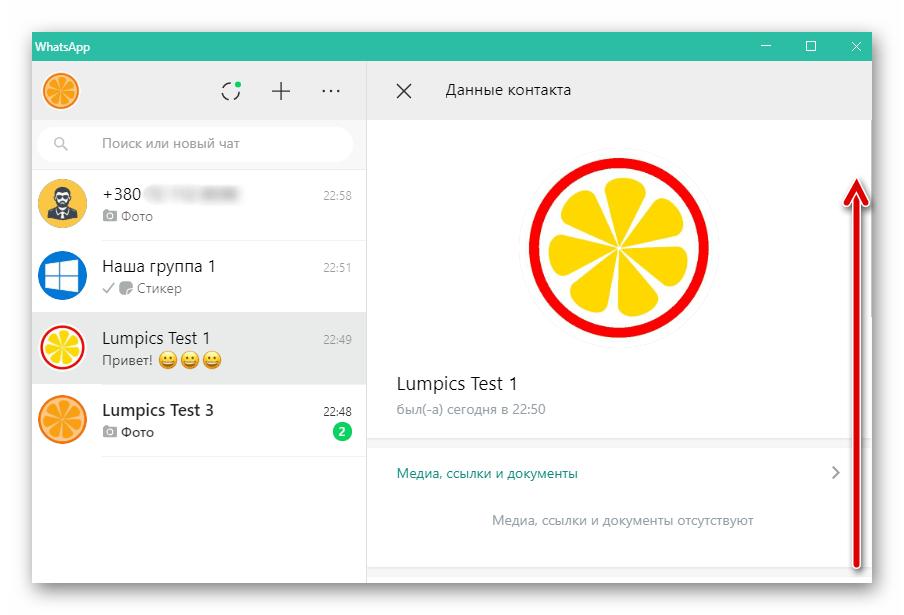 WhatsApp для ПК окно данные контакта в приложении