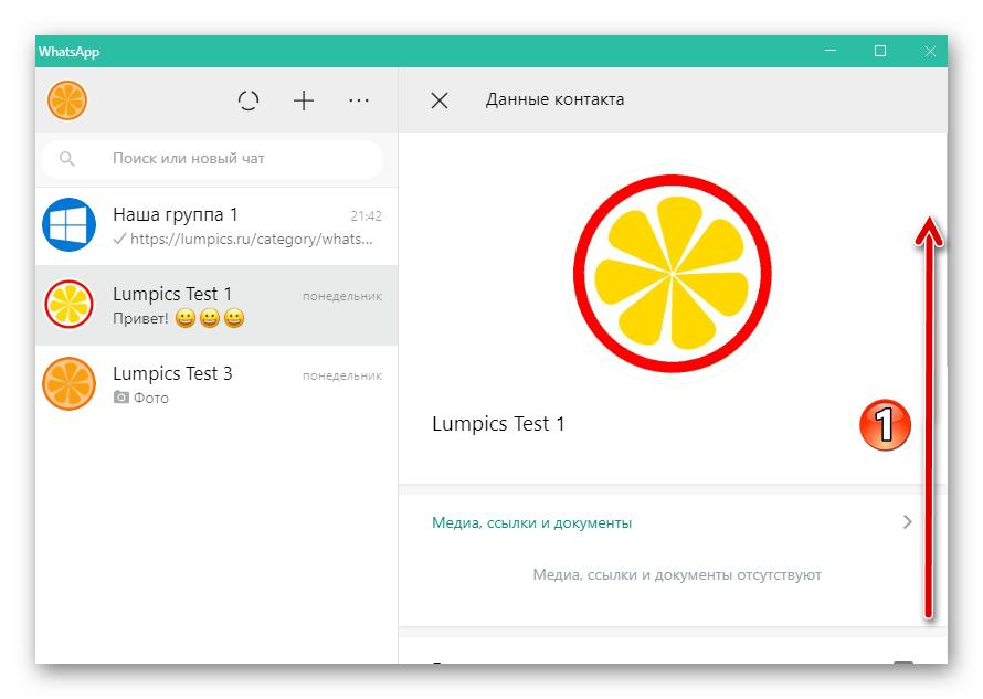 WhatsApp для Windows Область Данные контакта в окне мессенджера