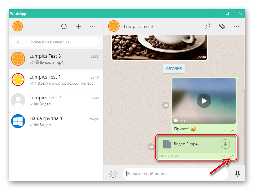 WhatsApp для Windows видеофайл отправлен через мессенджер