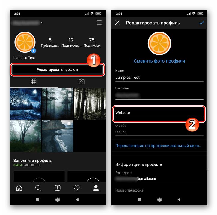 Instagram мобильное приложение кнопка Редактировать профиль - поле Website