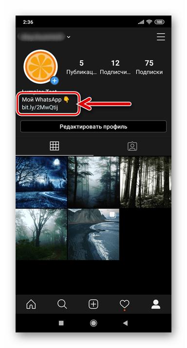Instagram создание ссылки на WatsApp и ее размещение в профиле соцсети завершены