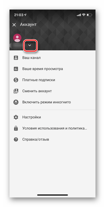 Нажатие на стрелку в приложении Ютуб iOS