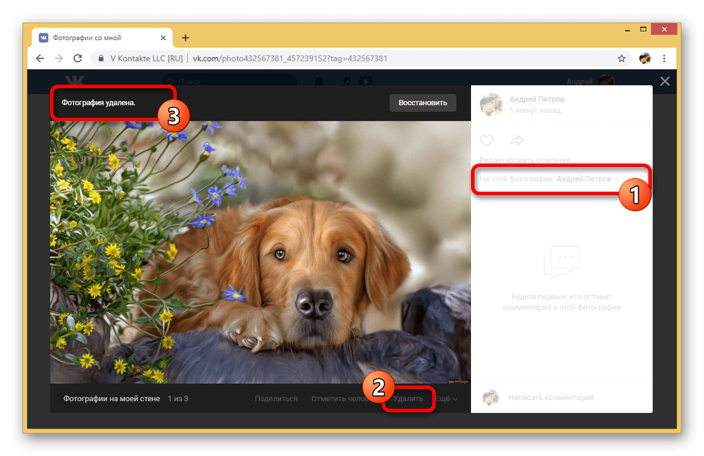 Пример удаления фотографии с отметкой на сайте ВКонтакте