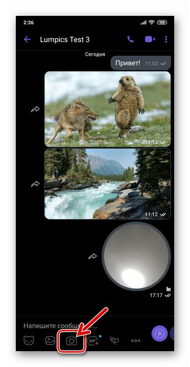 Viber для Android - кнопка Камера на экране чата для отправки фото или видео