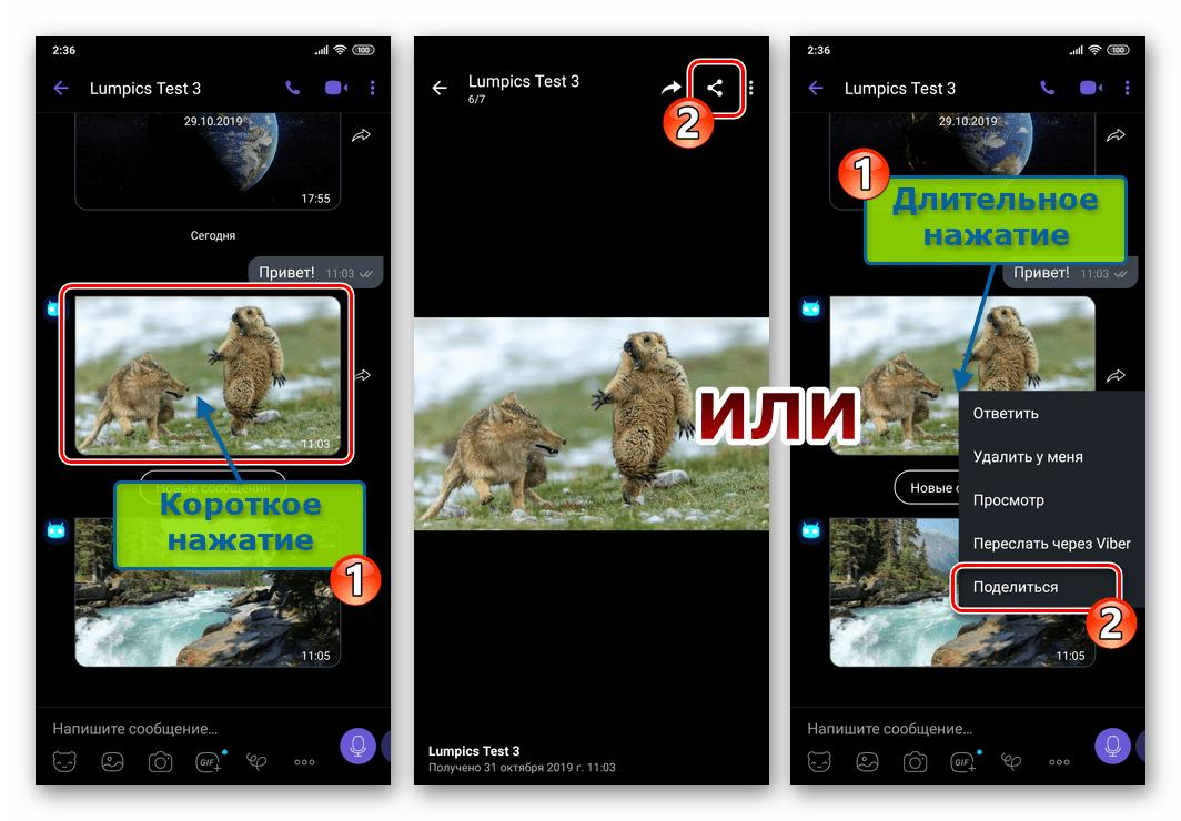 Viber для Android кнопка Поделиться для фото в переписке и на экране полноэкранного просмотра