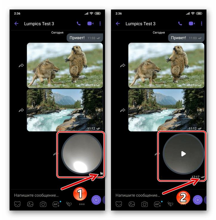 Viber для Android - Отправка короткого видеосообщения через мессенджер