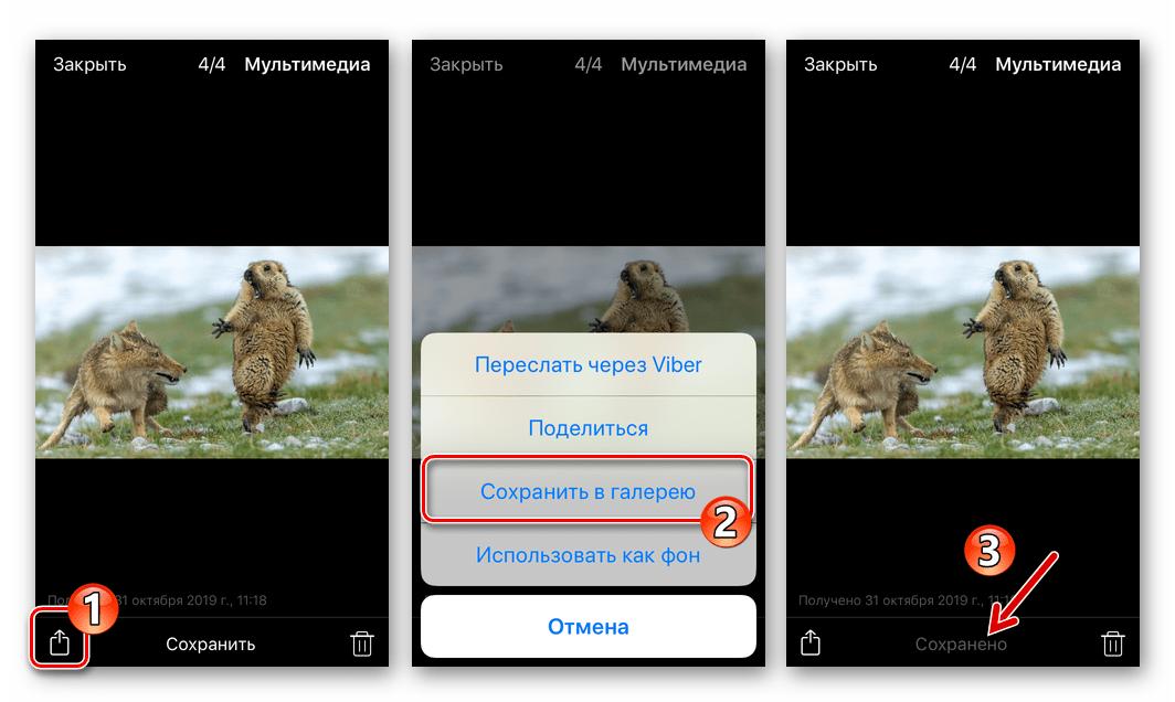 Viber для iPhone - копирование фото из мессенджера через меню Поделиться