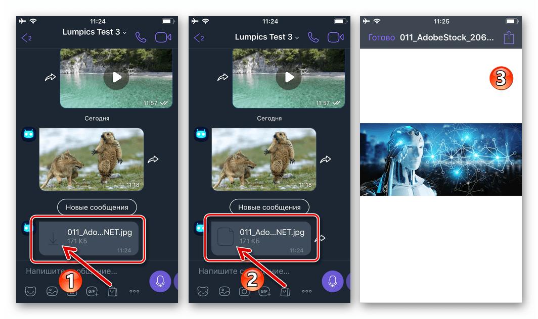 Viber для iPhone - открытие в мессенджере фотографии, присланной в виде файла