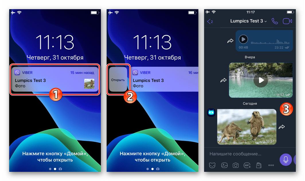 Viber для iPhone - переход в чат с полученным через мессенджер фото