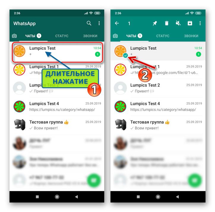 WhatsApp для Android выделение заголовка диалога или группы на вкладке Чаты мессенджера