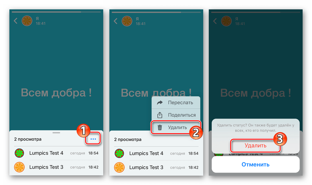 WhatsApp для iOS удаление Статуса из режима его полноэкранного просмотра