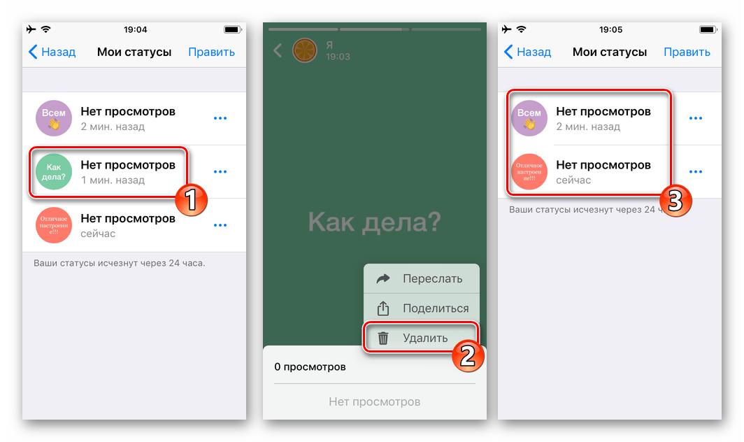 WhatsApp для iOS удаление всех обновлений Статуса поочередно из режима полноэкранного просмотра