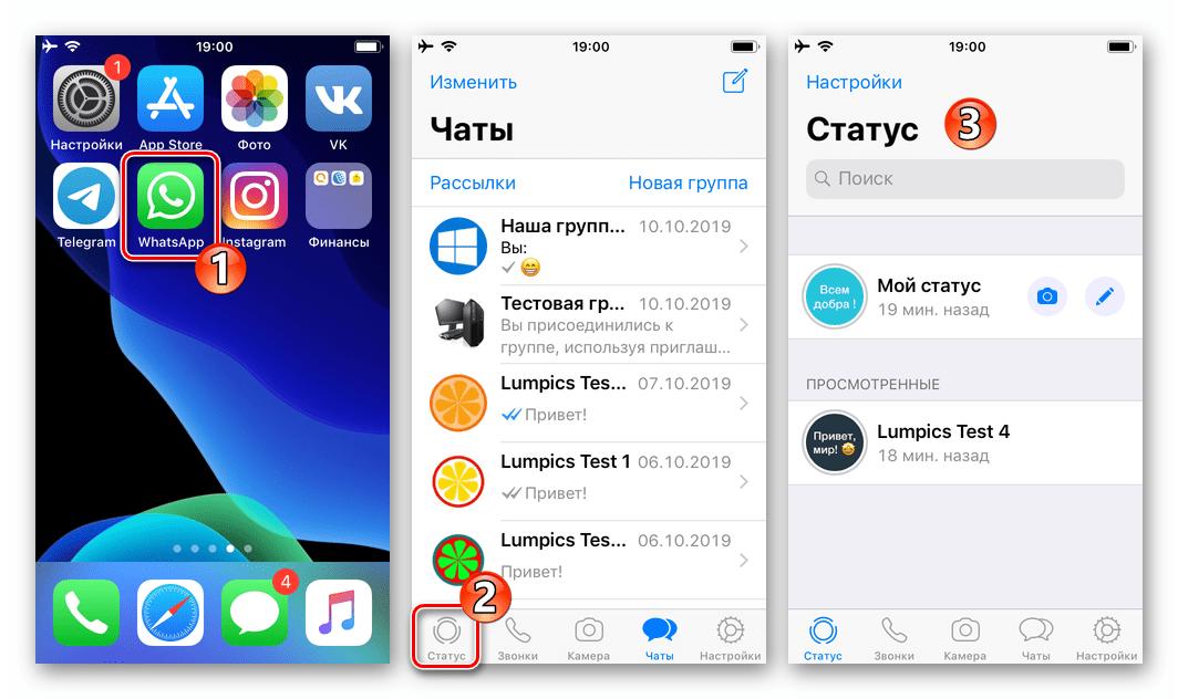 WhatsApp для iOS запуск приложения, переход в раздел Статус