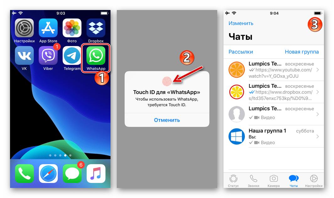WhatsApp для iOS запуск заблокированного в настройках мессенджера