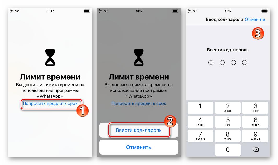 WhatsApp для iPhone ввод код-пароля для снятия Лимита времени