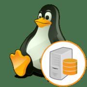 Файловый сервер на Linux