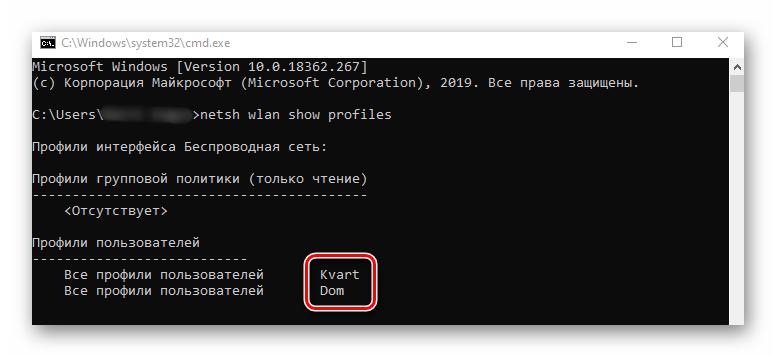 Определение названия беспроводной сети в Командной строке в Windows 10