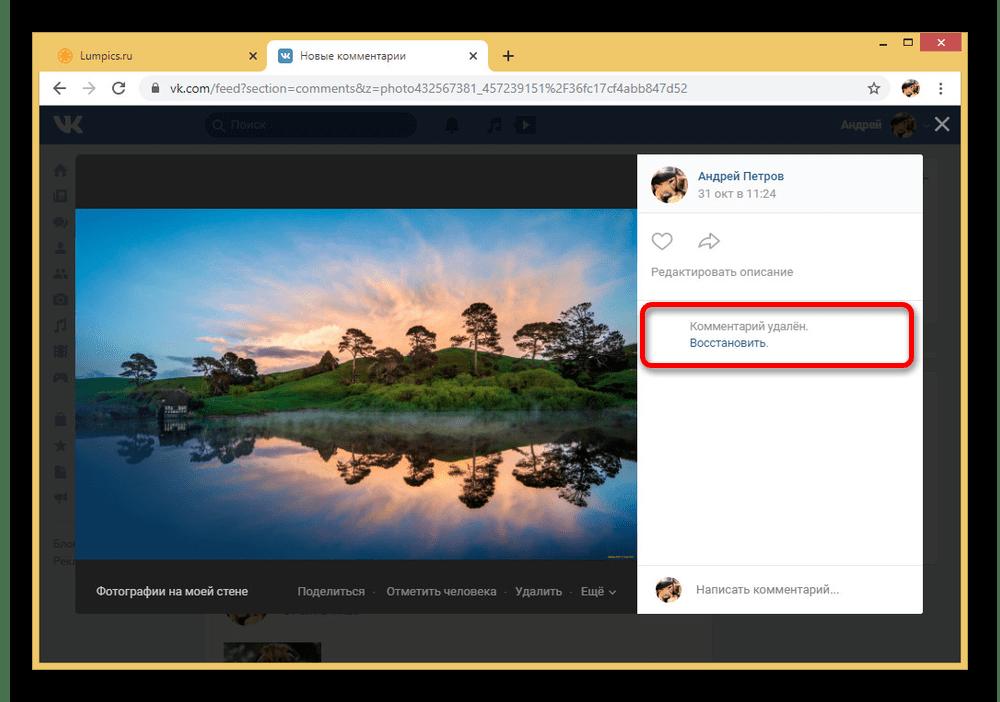 Успешное удаление комментария под фотографией на сайте ВКонтакте